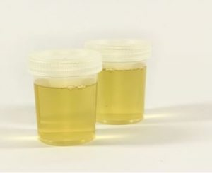 picture of store fake urine