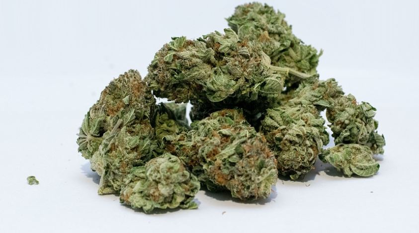 image of dry weed