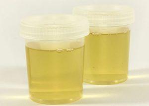 homemade synthetic pee